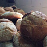 pa de blat de forment