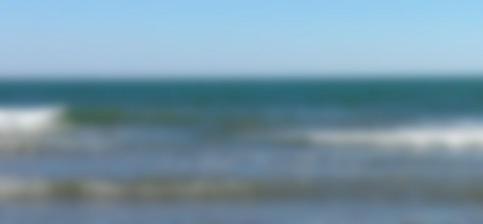 fons-marp